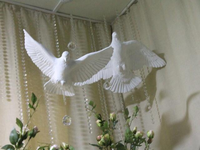 Оформление витрины голубями